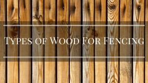 What Is The Best Wood for Fencing?