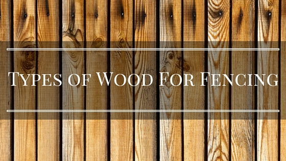 Best Wood For Fencing